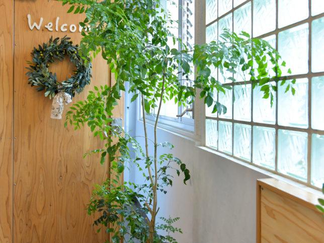 大泉学園 美容室